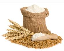 Best Quality Whole Wheat Flour Price/Wholesale Organic White WHEAT