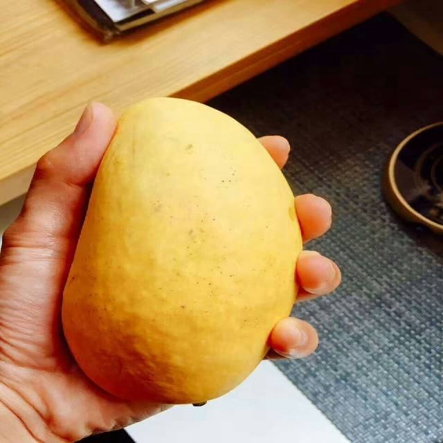 Organic 100% Pakistan Mango Export To Europe USA Australia Canada