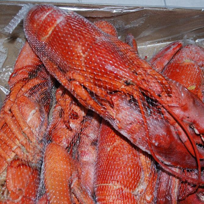 Замороженные морепродукты канадского омара