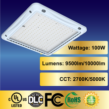 LEDi2 100W led canopy lights cUL RoSH IP65 waterproof rating 2700-5000K led lighting with DOB driver US popular