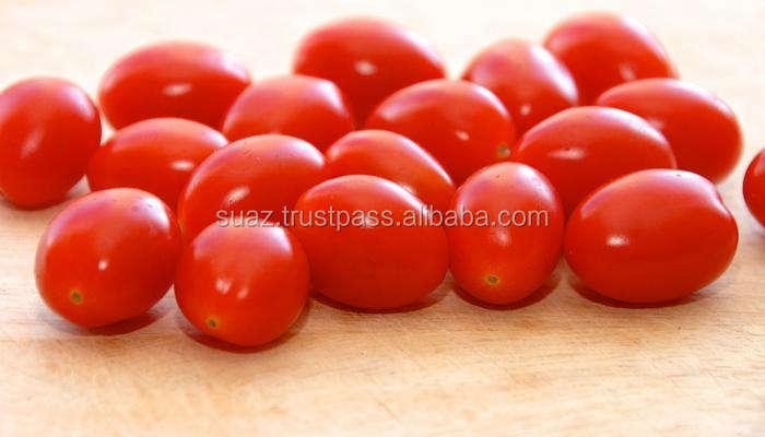バルクトマト、有機トマト、ファーム赤いトマト、新鮮なトマト、安い新鮮なトマトトマト、ローマトマト