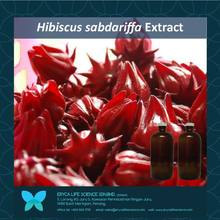 Roselle extract, Hibiscus sabdariffa Natural Extract, Actives, Flower