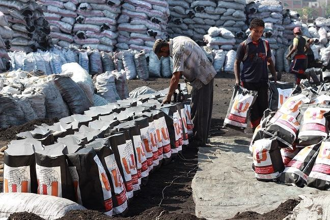 HARDWOOD CHARCOAL FOR BBQ FROM EGYPT WITH BEST QUALITY