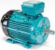 BC Dust-Explosion Proof Induction Motor