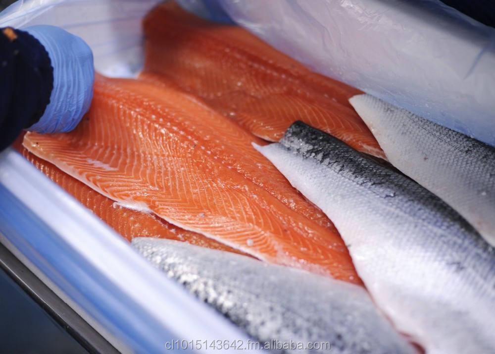 Salmo, Salmon Salar,