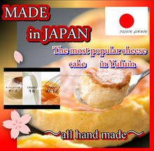 Japanese gourmet half baked white cheese cake for special occasion
