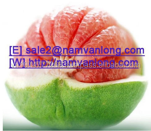 BEST BUY! FRESH POMELO at THE HIGH QUALITY and BEST PRICE