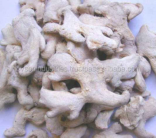 High Quality Indian Dried Ginger Buy Dried Ginger Export Prices Dried Ginger Price Dried Ginger Product On Alibaba Com