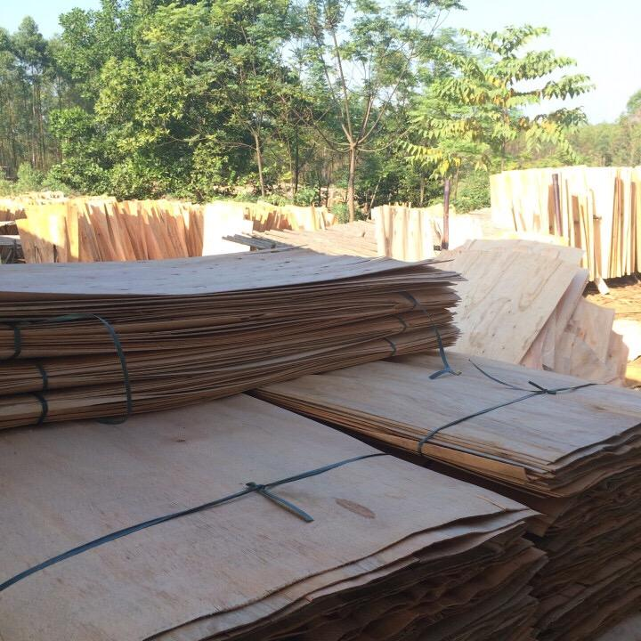 Natural Figured Dried Excellent Eucalyptus Core Veneer for Furniture