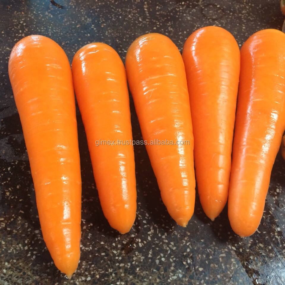 CARROT BEST QUALITY 2020