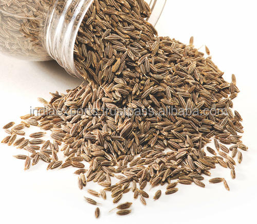 Best Quality Cumin Seed /Indian Jeera From India