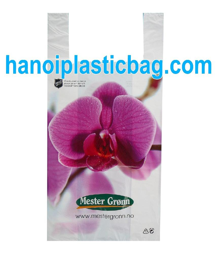 best brand plastic tshirt shopping bag export to Singapore, made in Vietnam