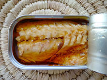 Canned Mackerel Fish in Oil or Sauces Indonesia Supplier