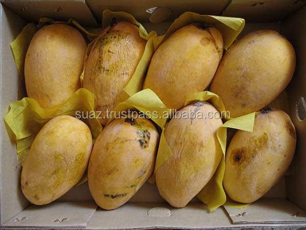 Chaunsa mangos、新鮮なパキスタンマンゴー、黄色甘いマンゴー、chonsaマンゴー