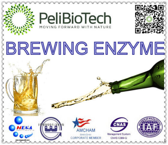 beer industry enzyme improving liquor yield of raw materials, shorten the fermentation cycle