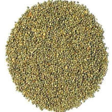 Green Millet | Bajra Low price