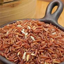 Red Brown Rice Dragon Blood Rice Vietnam - High Quality-Good Rice For Health (PHOEBE)