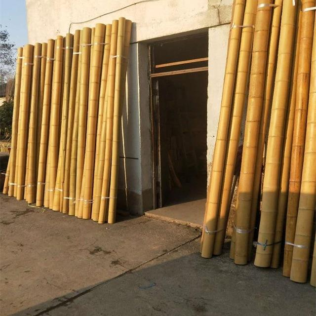 MOSO BAMBOO pole with the cheapest price in Viet Nam market