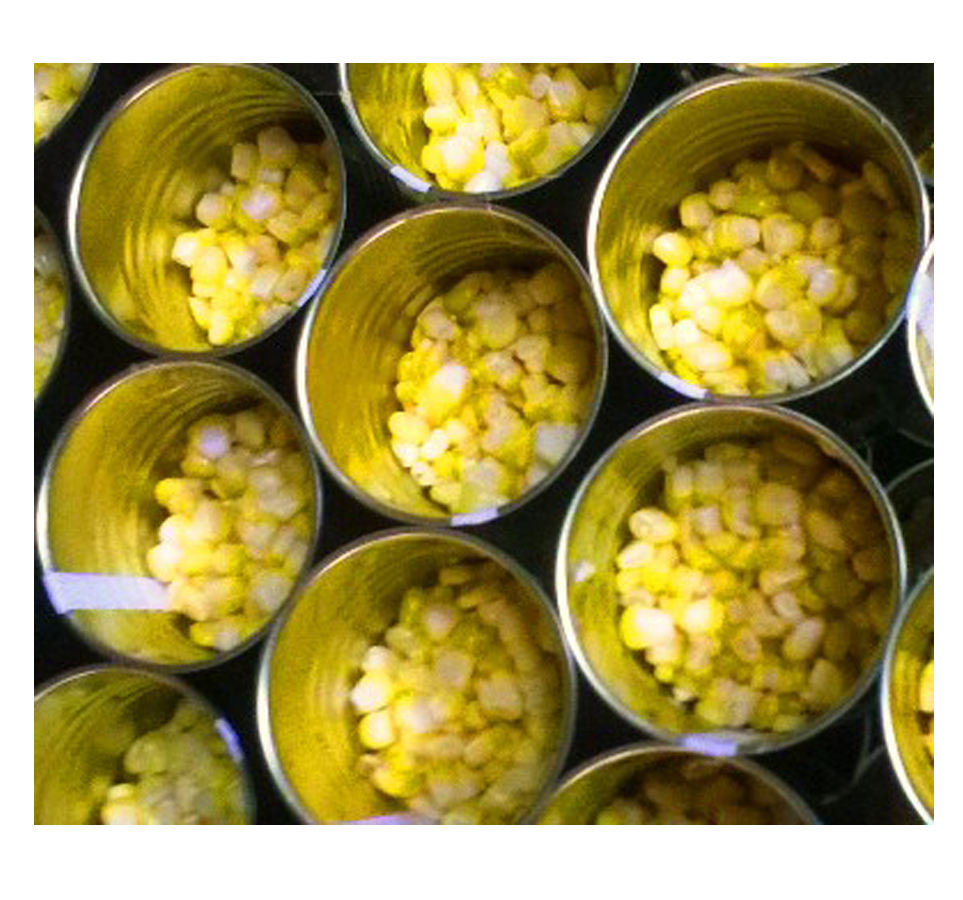Canned cream corn in Brine 425gr