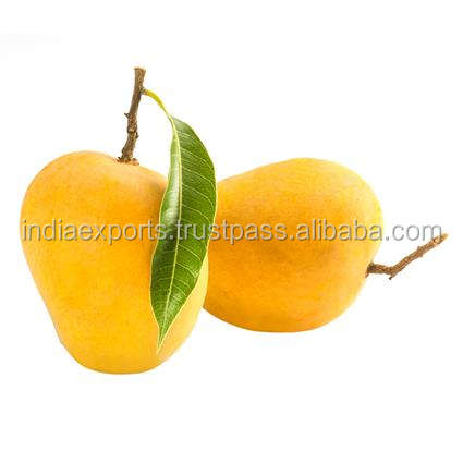 Export Quality Indian Mangoes