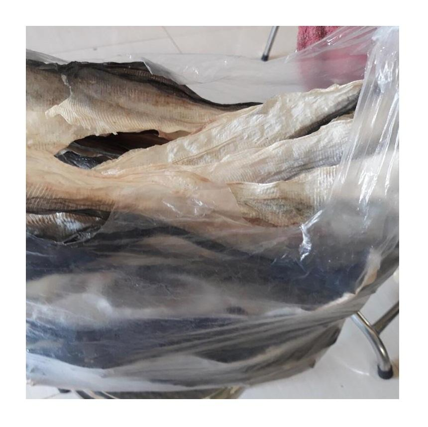 Dried Catfish Fish skin/ Frozen raw fish skin for Collagen High Quality and Best Price From Vietnam