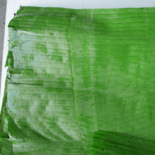 Indian Fresh Banana Leaves Available...