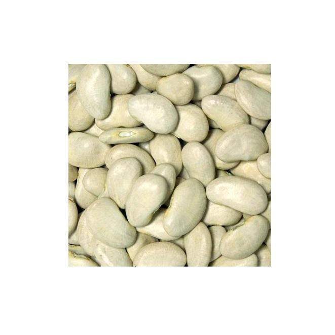 Premium Quality Butter (Lima) Beans, Azuki Beans for Sale...
