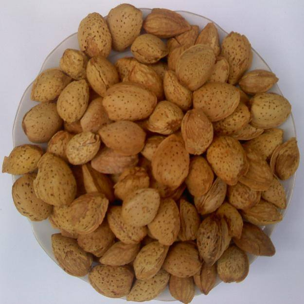 100% natural almond /almond nuts from vietnam
