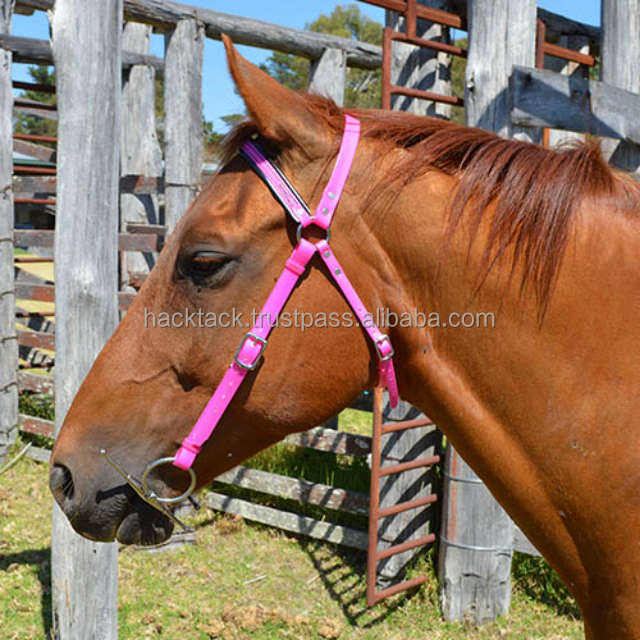 Adjustable fancy horse racing bridle for Equestrian