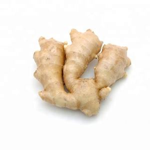 Fresh Ginger / Ginger Price In India / Wholesale Fresh Ginger
