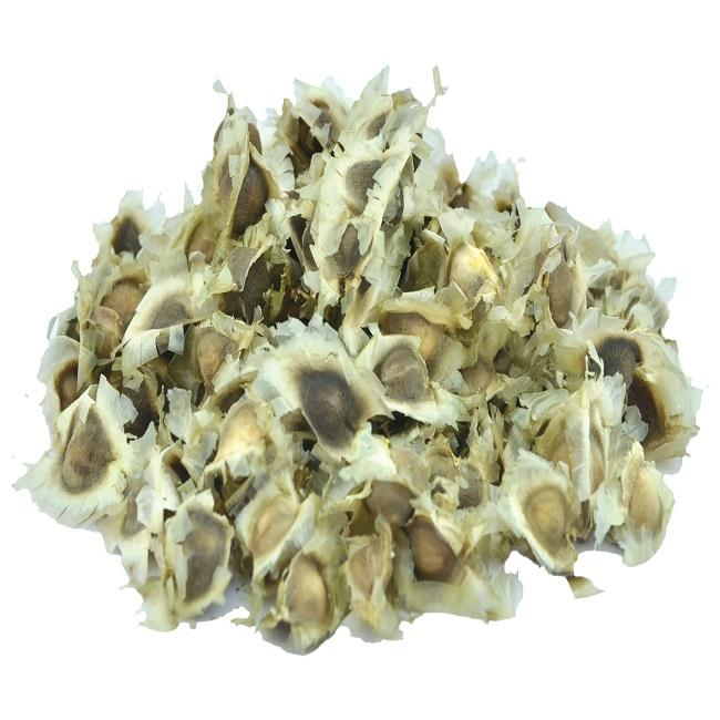 excellent moringa seeds