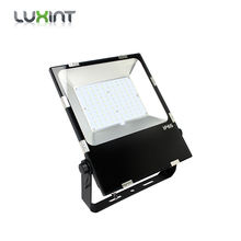 LUXINT Shenzhen LED Light Supplier Approved 50W 150W 200W LED Outdoor Flood Light 100W CCT 5000K for American Market