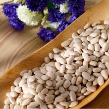 Big Size White Kidney Beans for Sale
