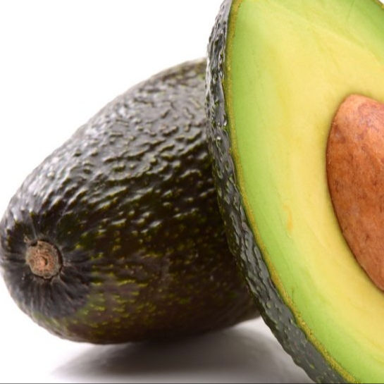 WHOLE SALE FRESH AVOCADOS