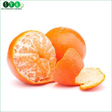 Best Beneficial Tangerine Essential Oil
