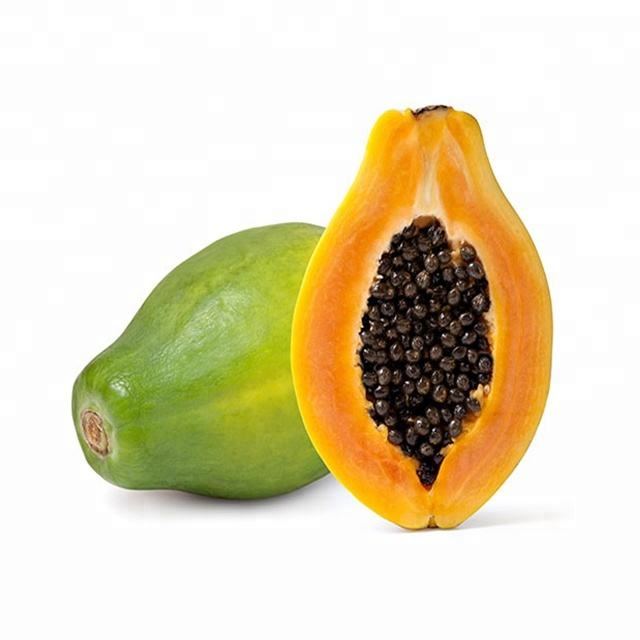 Wholesale Fresh Papaya / Fresh Green Papaya / Best Quality Of Papaya For Sale