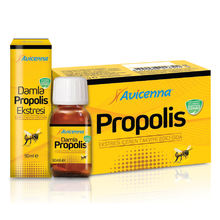 Propolis Supplement Immune Booster Supplements Capsule Blister Package private label dietary supplements