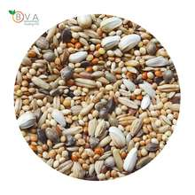 Ukrainian Factory Supplies Best Selling Parrot Mixed Food for Bird Feed, Seeds For Wholesale Parakeet and Lovebird