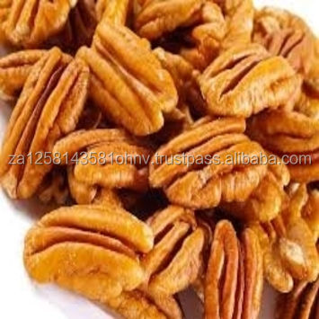 High Quality Grade A Raw Pecan Nuts - Pecan Nuts