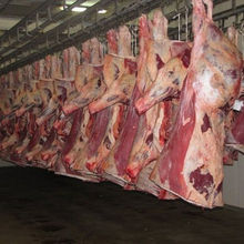 Frozen Buffalo and Veal Meat at affordable price,,