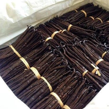 high quality vanilla beans wholesale