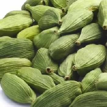 Organic Premium Quality Green Cardamom for Export
