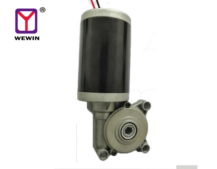 12V 24 V DC Gear Motor Hollow Plastic Gear for Electric Height Adjustable Desk Motor Mini Brush Table Lift Motor