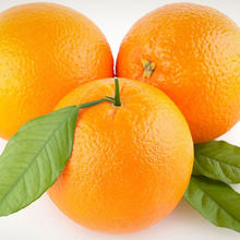 Fresh Orange, Citrus Fruit, Navel, Valencia Available Now with Competitive Price
