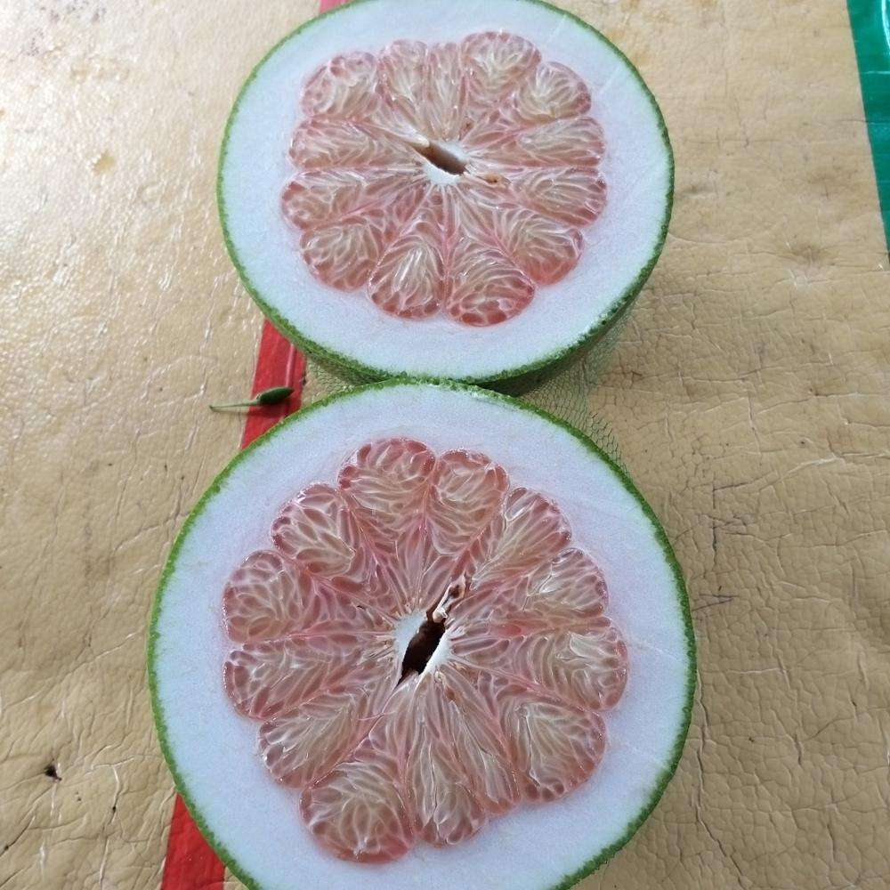 HIGH QUALITY GREEN SKIN POMELO FROM VIET NAM