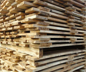 ACACIA WOOD/RUBBER WOOD/PINE WOOD TIMBER FOR WOODEN PALLET FOR SALE