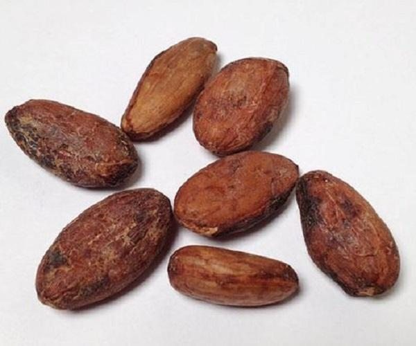 Sun Dried Cocoa Beans /Dried Grade A Cocoa/ Cacao/ Chocolate bean