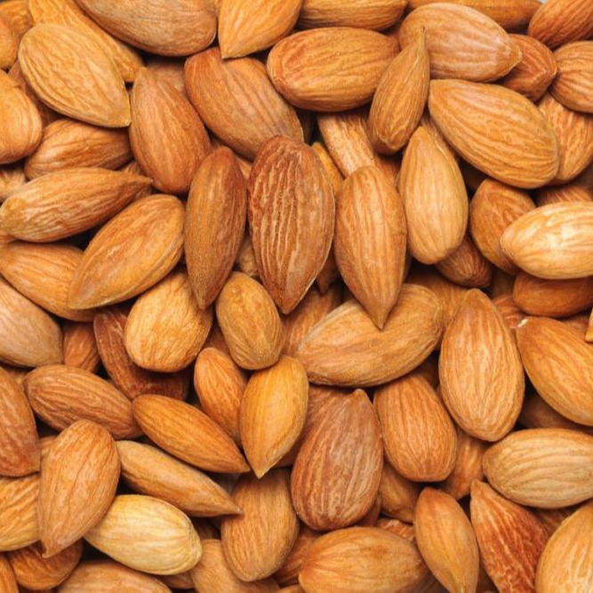 organic almond in shell almond nuts