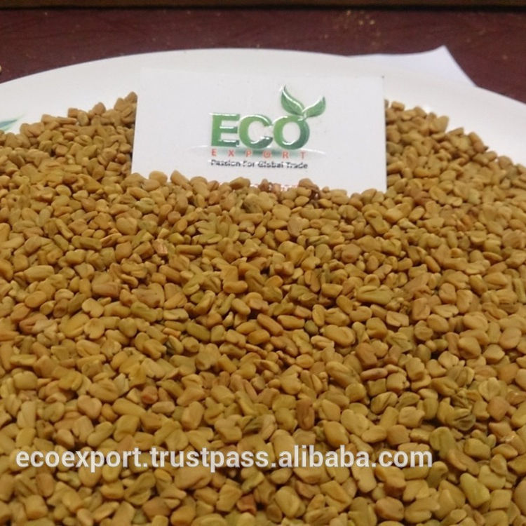 Top Sales Fenugreek Seeds In India/ Export House For Spices