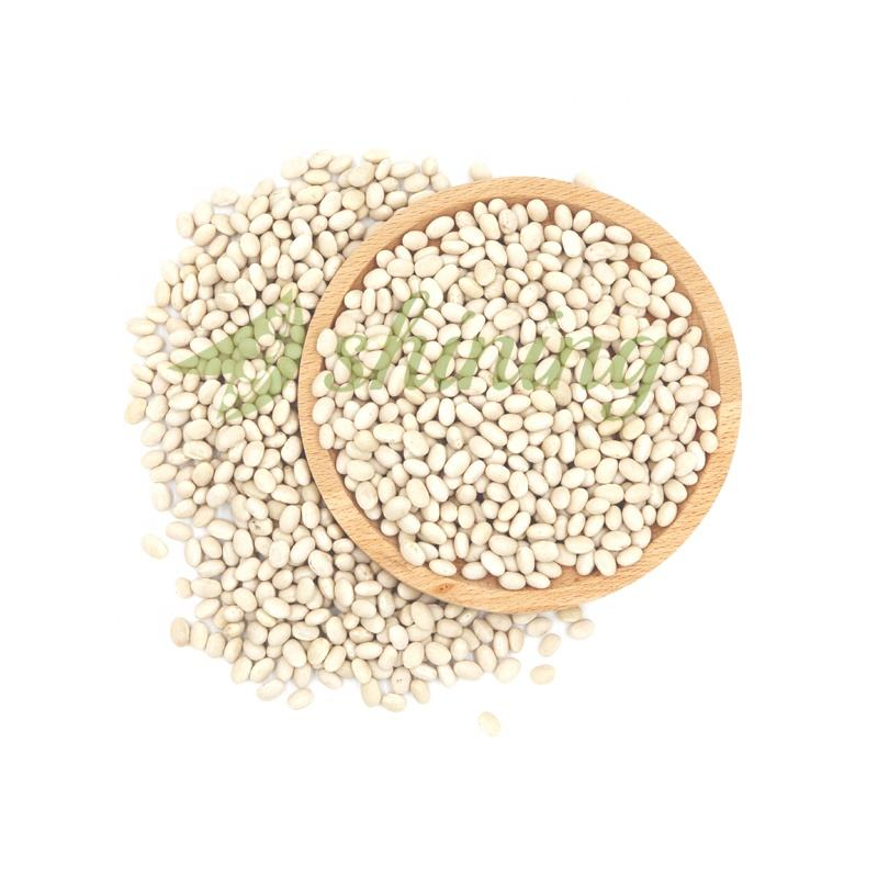 Best Selling Chinese Price Small Round Dry White Kidney Beans